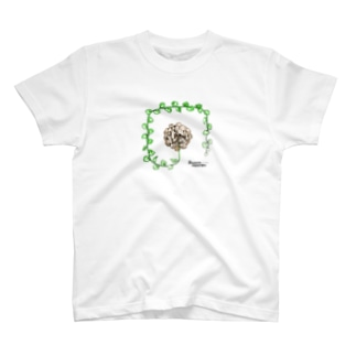 T-29 Dioscorea elephantipes T-shirts