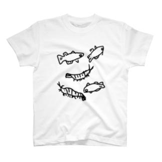 メダカとミナミヌマエビ T-shirts