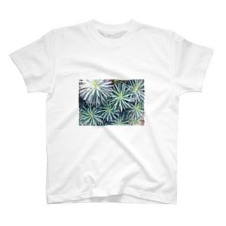 生い茂ったTシャツ T-shirts