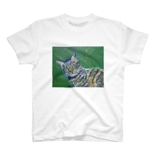 いぶし銀 T-Shirt