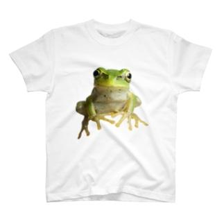 2D-Frog ver.01 T-shirts