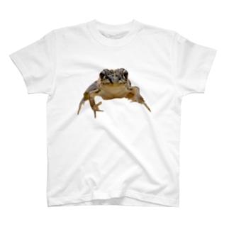 2D-Frog ver.03 T-shirts