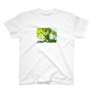 タケコプター♫ T-shirts