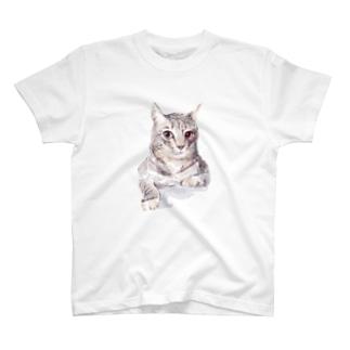 そんなにみつめないで!ドキドキしちゃうから♪かわいい猫のイラスト T-shirts