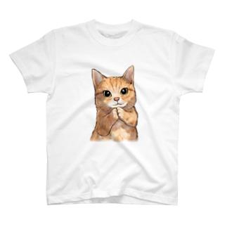 おねだり猫 T-shirts