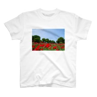 ポピー畑 T-shirts