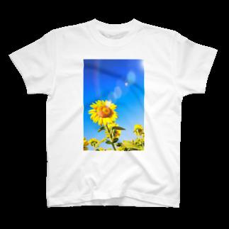 MonaRose Bijouxの虹空とひまわり Tシャツ