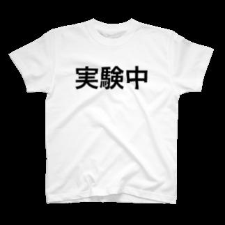 hnagaminの実験中 T-shirts