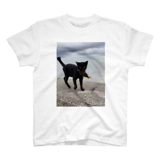 AMURITANONIWA-OFF LINE ART SHOPの魚をくわえた島猫 T-Shirt