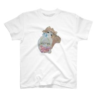 花冠にゃんこちゃん♡ T-Shirt