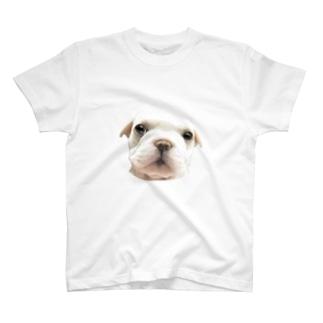 フレンチブルドッグA 子犬 T-shirts