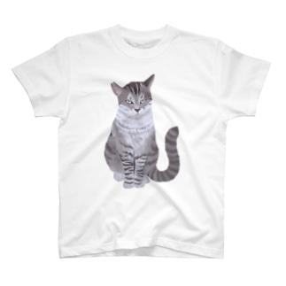 ギザ耳CAT T-Shirt