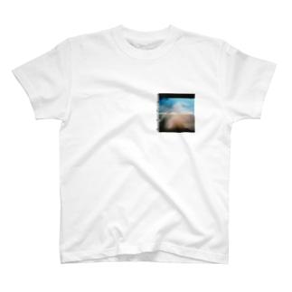 整体 summer Tシャツ T-shirts