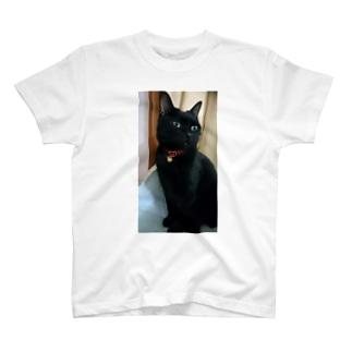 キリッ(ねこ) T-shirts