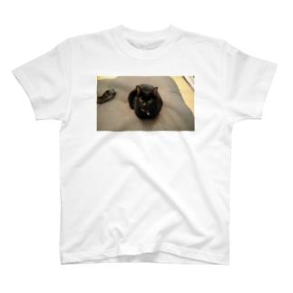 おすまし(ねこ) T-shirts