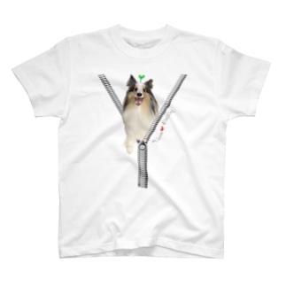 ジップデザイン Liebe T-shirts