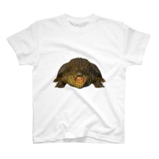 わにシャツ (001) ワニ 鰐 wani T-Shirt