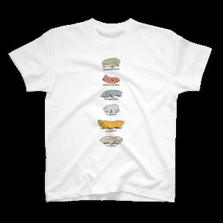 幻想水系branch byいずもり・ようのFish or Newt? (reprise) T-shirts