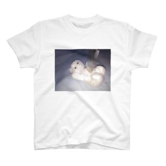 ( ; . ; ) T-shirts