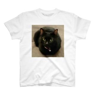 黒猫(くろねこ) T-shirts