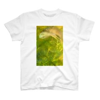 ワイルドベタ2 T-shirts