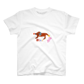 18 T-shirts