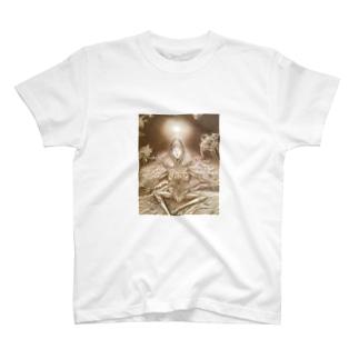salvation T-shirts