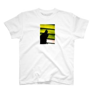 otonanokaidannoborou T-shirts