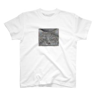 deep cat T-shirts