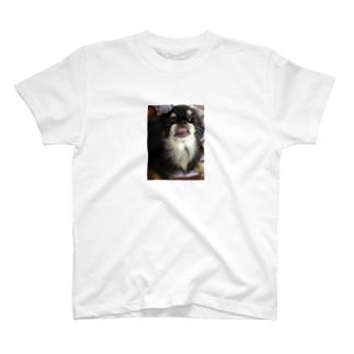 さん太郎が舌出してかわいいやつ T-shirts