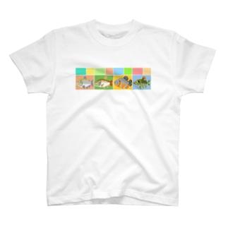 カラシンみに T-shirts