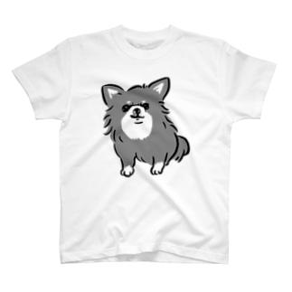 チワワ 警戒中 ブラックタン【せいこせんせい】 T-shirts