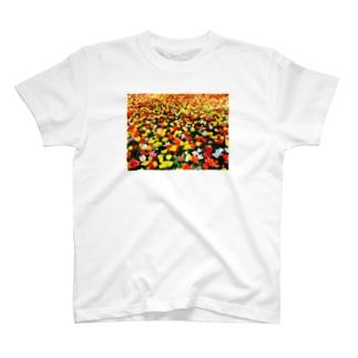 チューリップ畑 T-shirts