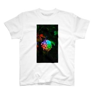 「レインボー紫陽花」 T-shirts
