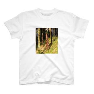 伸び盛り^_^ T-shirts