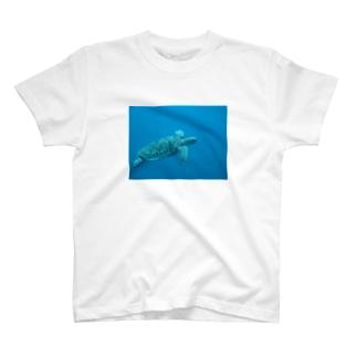 飛ぶ T-shirts