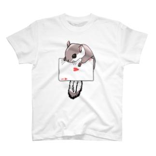 トランプとモモンガ T-Shirt