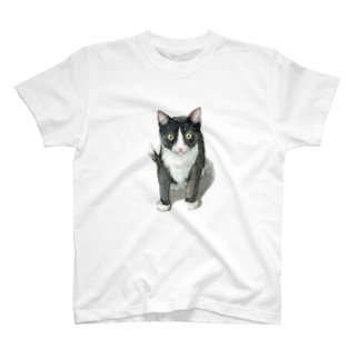 ハチワレ子猫 Tシャツ