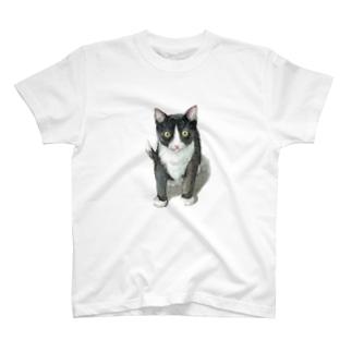 ハチワレ子猫 T-shirts