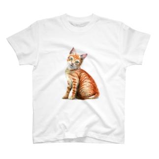 茶トラ子猫 Tシャツ