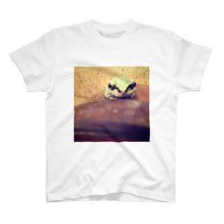 かえる🐾ぐっず T-shirts