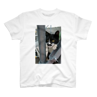 張り込み T-shirts