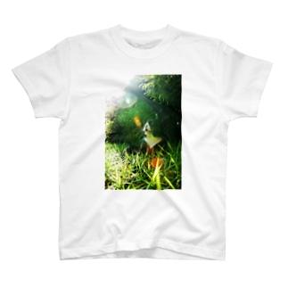 陽がさしてきた T-shirts