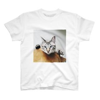 より目のくっちゃん T-shirts