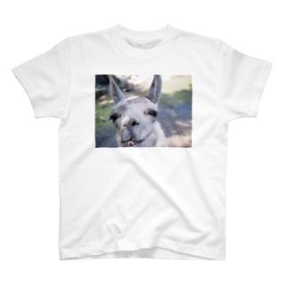 笑ってるやつ T-shirts