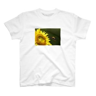 ハチぶーん T-Shirt