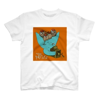 ピンホール Tシャツ