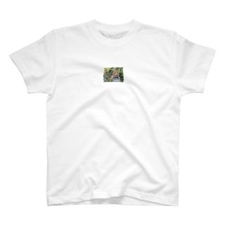 豹柄 T-shirts