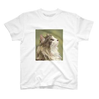 ノルウェージャンフォレストキャットCarreくん T-shirts