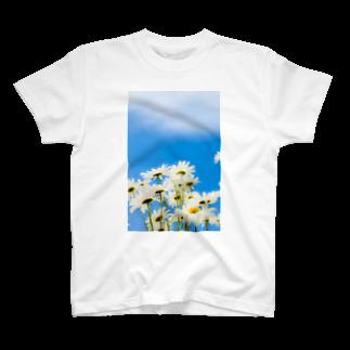 ハリネズミの青い空白い花 T-shirts